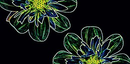 Fluorescent Flower Green Inserto
